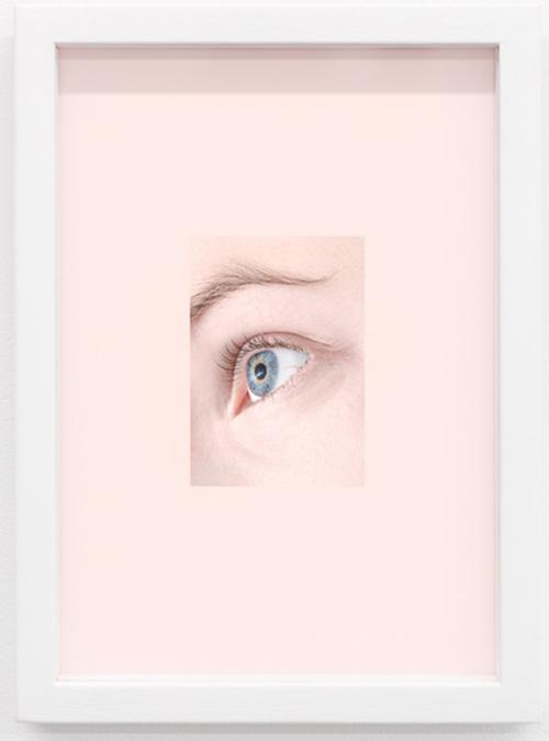 Venus Cry Trap, 2014 Framed pigment print, 22 x 16 cm