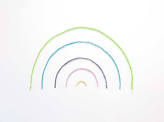 rainbow thorn